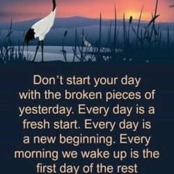 Dont Start Your Day With