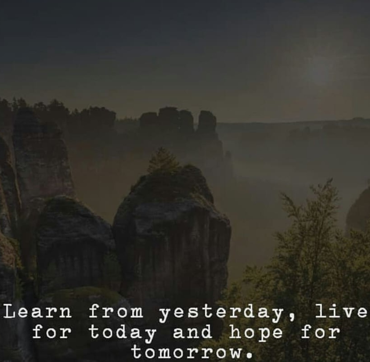 Learn From Yesterday Live