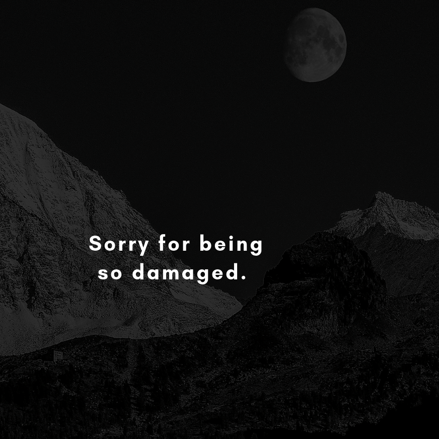 Sorry for being so damaged