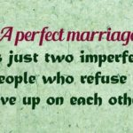 A Perfect Marriage...
