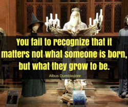 You Fail To Recognize...